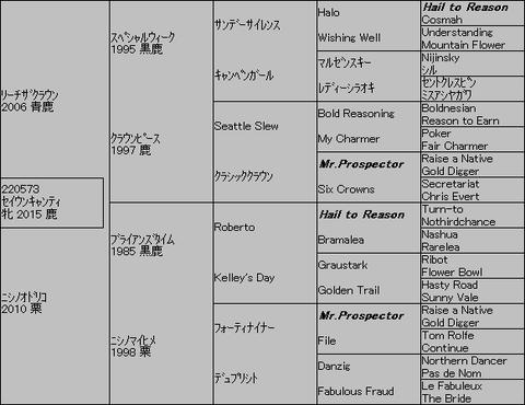 セイウンキャンティ5代血統表