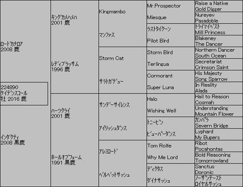 ケイデンスコール5代血統表
