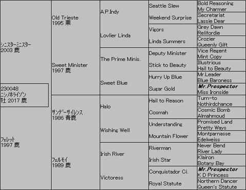 ニシノホライゾン5代血統表