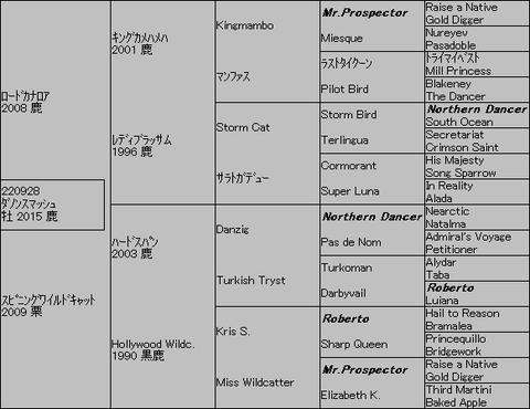 ダノンスマッシュ5代血統表