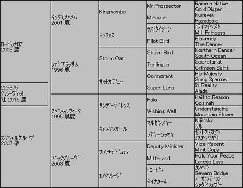 グルーヴィット5代血統表