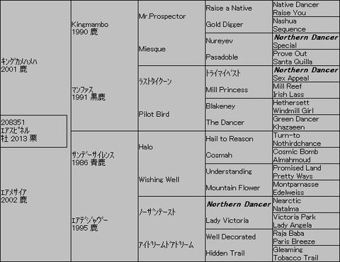 エアスピネル5代血統表