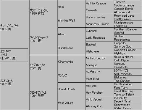 カントル5代血統表