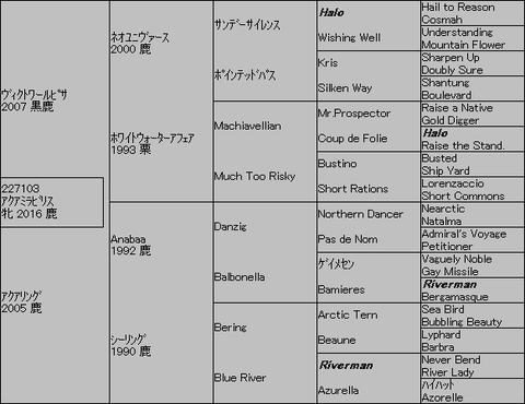 アクアミラビリス5代血統表