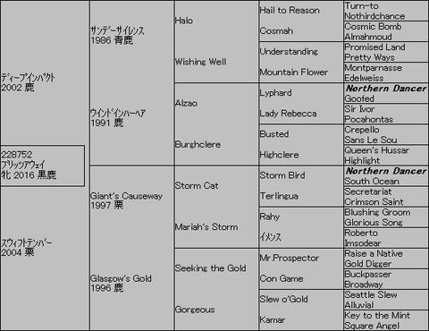 ブリッツアウェイ5代血統表