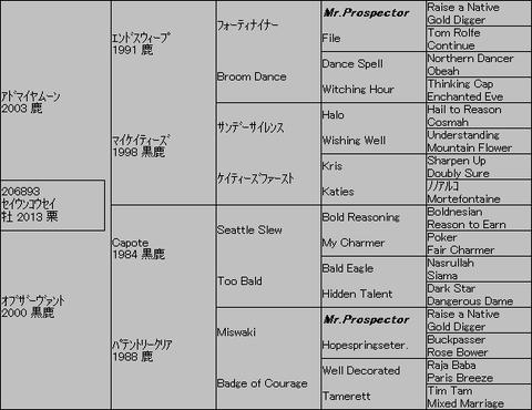 セイウンコウセイ5代血統表