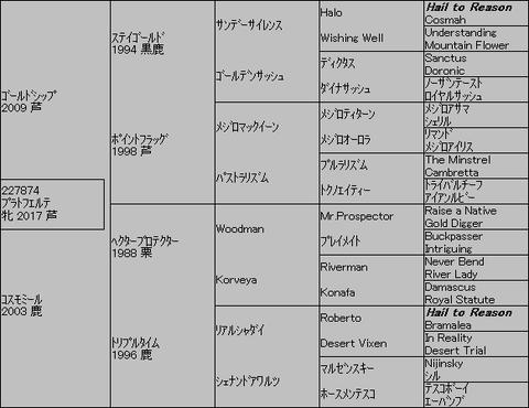 プラトフエルテ5代血統表