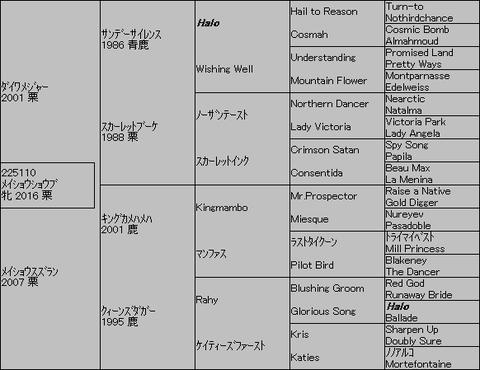 メイショウショウブ5代血統表