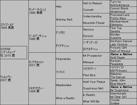 インディチャンプ5代血統表