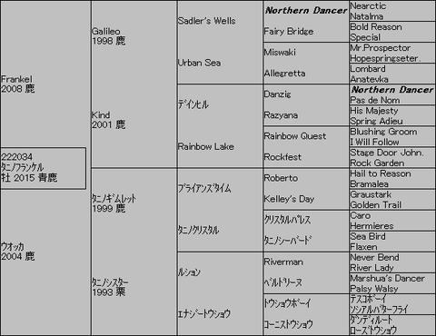 タニノフランケル5代血統表