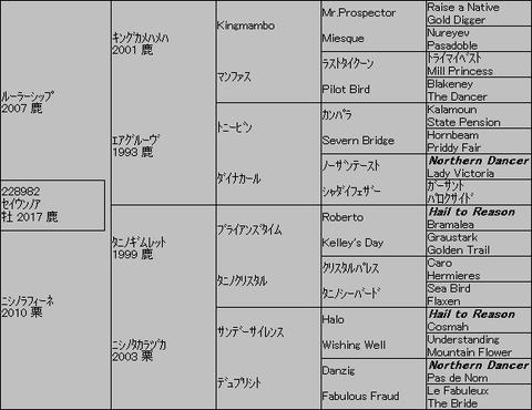 セイウンノア5代血統表
