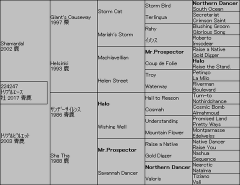 トリプルエース5代血統表