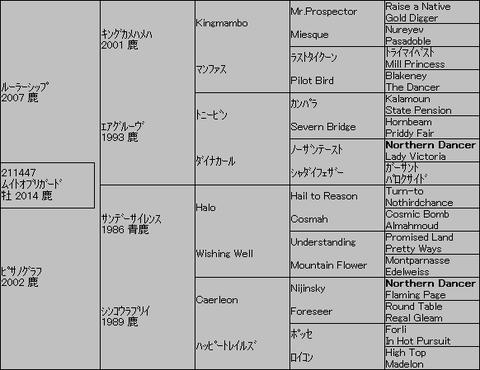 ムイトオブリガード5代血統表