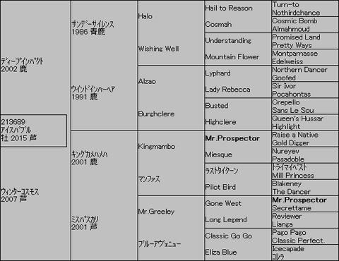 アイスバブル5代血統表