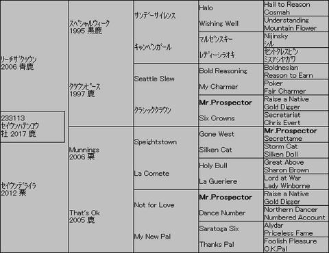 セイウンハテンコウ5代血統表