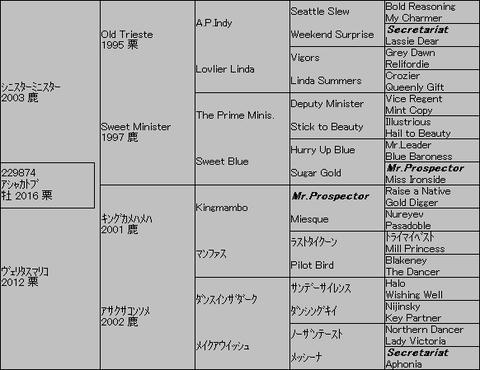 アシャカトブ5代血統表