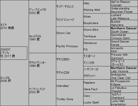 ビアンフェ5代血統表