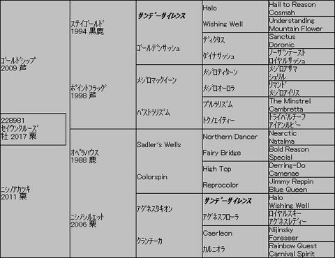 セイウンクルーズ5代血統表