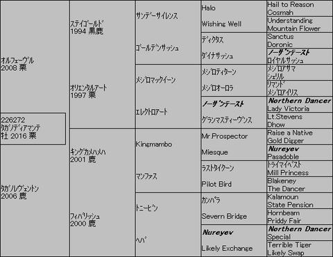 タガノディアマンテ5代血統表