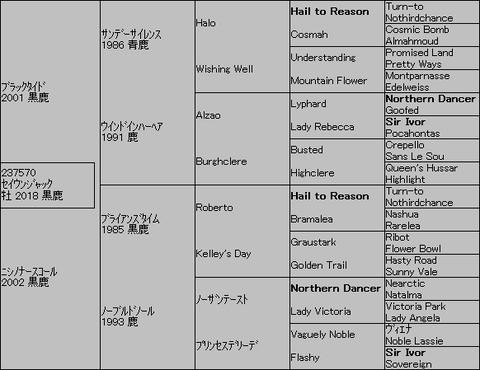 セイウンジャック5代血統表
