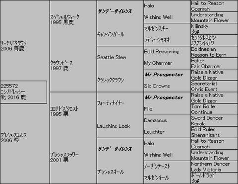 ニシノドレッシー5代血統表