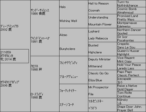 カワキタエンカ5代血統表