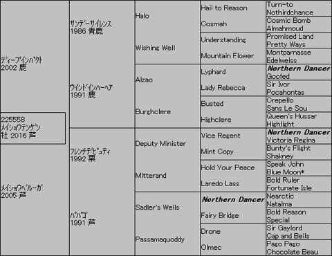 メイショウテンゲン5代血統表