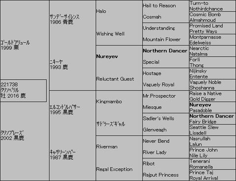 クリソベリル5代血統表
