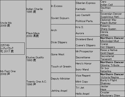 レッチェバロック5代血統表