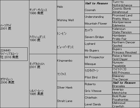 リバーシブルレーン5代血統表