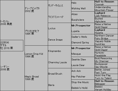 ザダル5代血統表