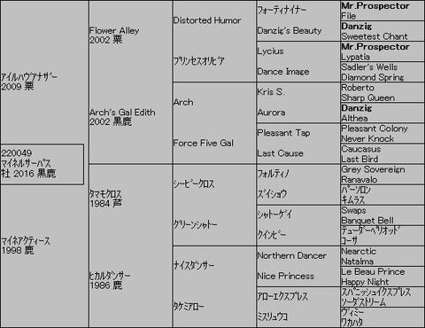 マイネルサーパス5代血統表