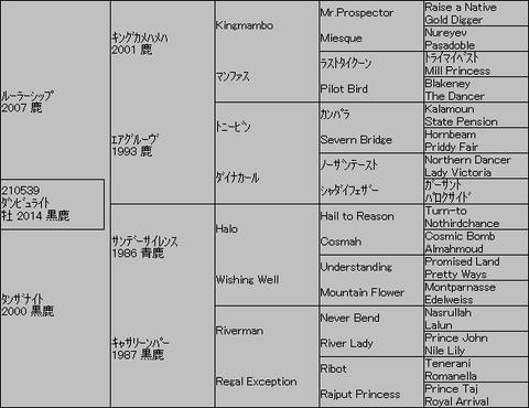 ダンビュライト5代血統表
