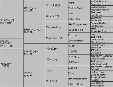 レッドアネモス5代血統表