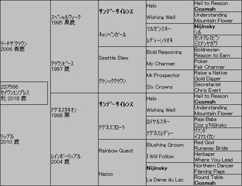 セイウンエンプレス5代血統表
