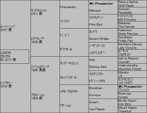 クロスセル5代血統表