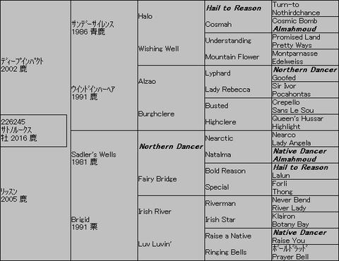 サトノルークス5代血統表