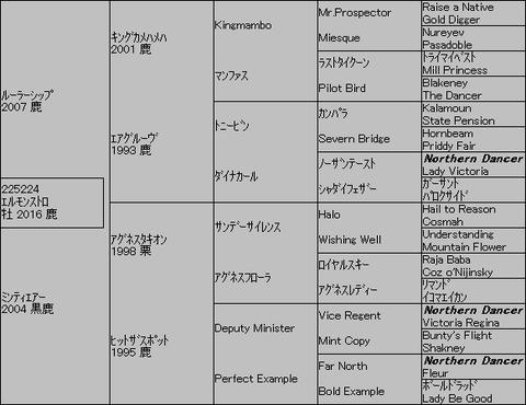 エルモンストロ5代血統表