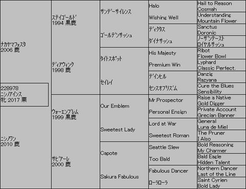 ニシノアインス5代血統表