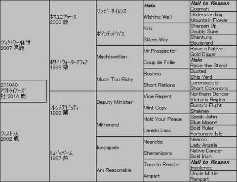 アウトライアーズ5代血統表