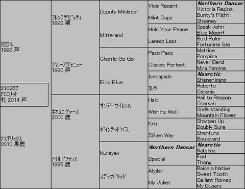 アエロリット5代血統表