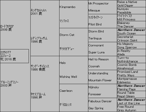 ココフィーユ5代血統表