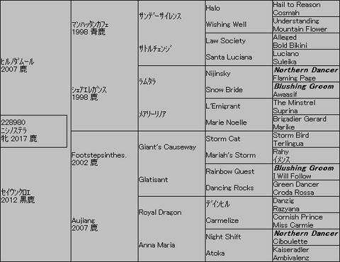 ニシノステラ5代血統表