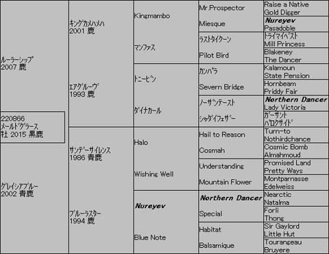 メールドグラース5代血統表