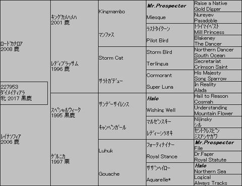 ダイメイティアラ5代血統表