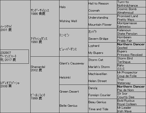 ウーマンズハート5代血統表
