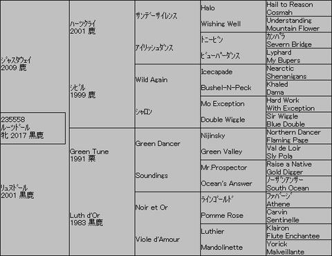 ルーツドール5代血統表