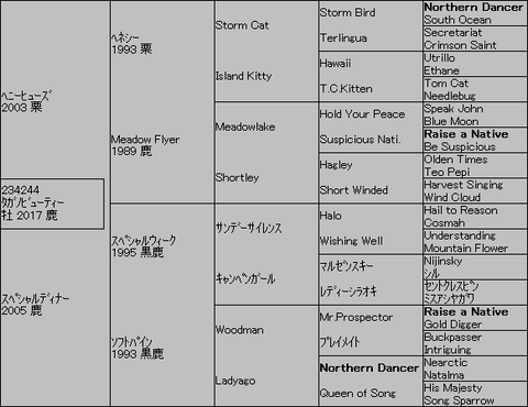 タガノビューティー5代血統表