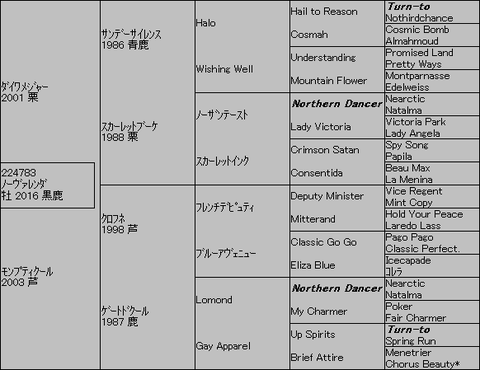ノーヴァレンダ5代血統表