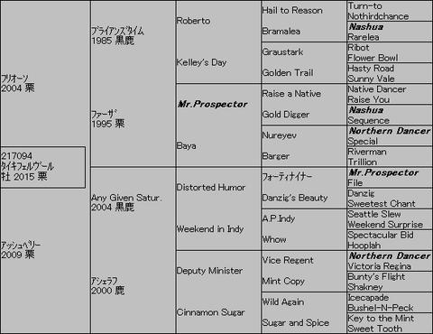 タイキフェルヴール5代血統表